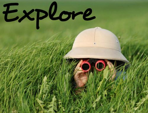 Explore Sunday